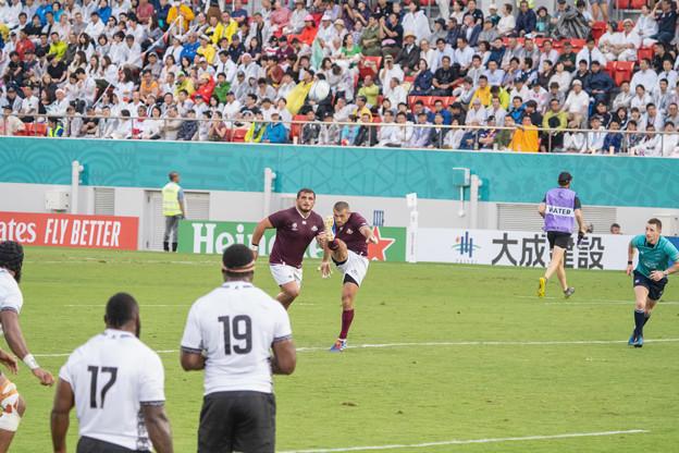 ラグビー・ワールドカップ 2019 (29)