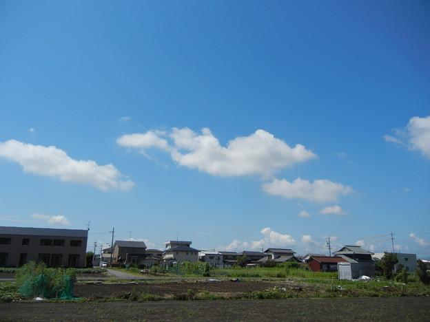 写真: DSCN4581