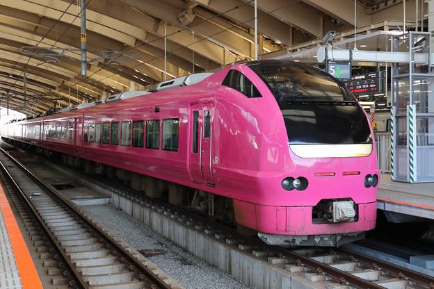 ハマナス色E653系@新潟駅