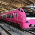 Photos: ハマナス色E653系@新潟駅