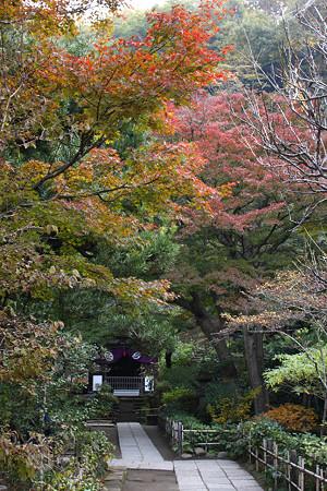 円覚寺(黄梅院)