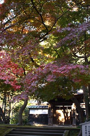 円覚寺(居士林)