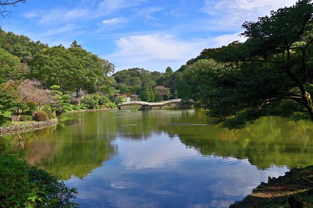薬師池公園 1
