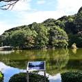 Photos: 薬師池公園 2