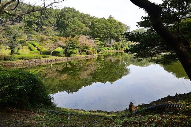 薬師池公園 3