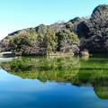 Photos: 薬師池