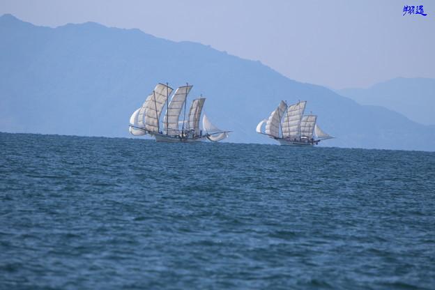 Photos: 芦北うたせ船3