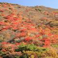 Photos: 〇牧の戸峠4