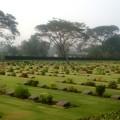 写真: 連合軍墓地