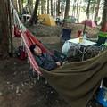 Photos: ハンモックでキャンプ
