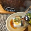 湯豆腐最高