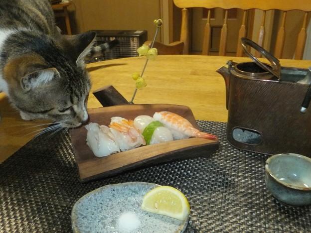 こぞと寿司
