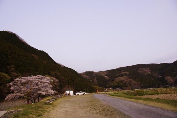 埼玉県の某所