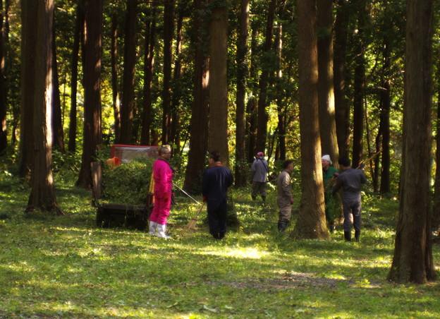 森の整備中