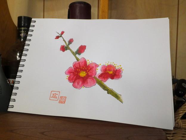 水彩画を描く