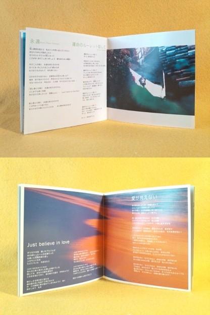 オマケ有り ZARD ザード BEST The Single Collection ~軌跡~ ベストアルバム CD