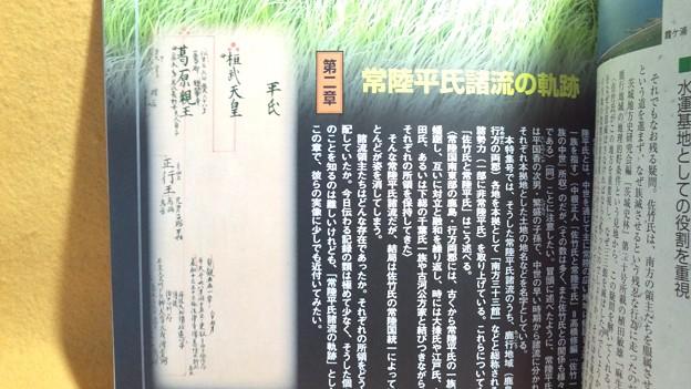 四百年後の源平戦 佐竹氏統一の光と影 歴史 雑誌