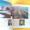 Photos: 常陽藝文 メロン産地 鹿島郡旭村 雑誌