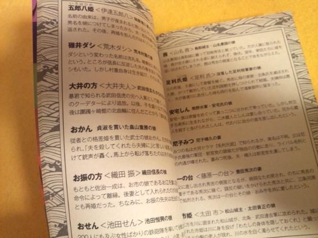 『戦国姫君データファイル』 内容(ご参考)