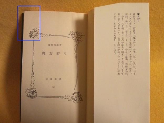 Photos: 折れ位置確認用(この程度の折れです)
