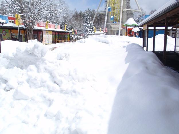 3/24 雪遊び広場