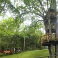 Photos: 9/3 かわせみのツリーハウスとSLキングダム号