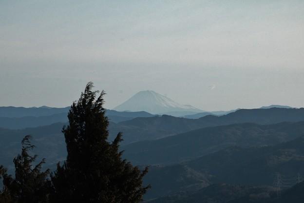 富幕山猪の平から富士山