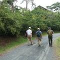 写真: 森林公園ウォーク旧山友とその仲間