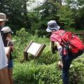 写真: 先日の森林公園 自然いきものかんさつ隊