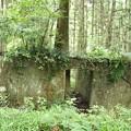 磐田市 雨垂(うたり)の森 光明電気鉄道遺構