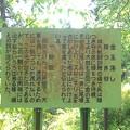 Photos: 横地城跡