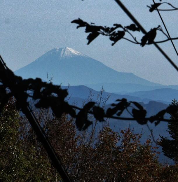 2018年富幕山へ☆トミー今年96回登頂