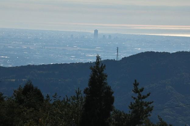 富幕山からアクトタワー