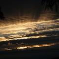Photos: 今朝の日の出は雲に隠れて~