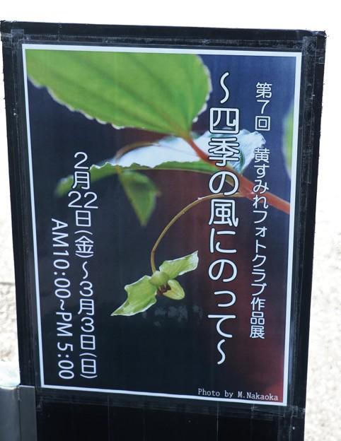 第7回黄すみれフォトクラブ写真展