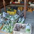 Photos: ここはどこ~?田舎のスーパーよ・・グリーンマートつげの(黄柳野)