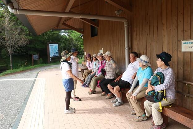 Photos: 森林公園ウォーク旧山友とその仲間