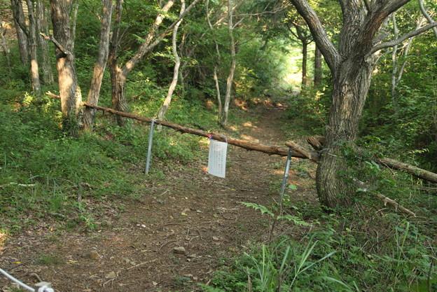 以前富幕山の緩やかコース作った頃バリケード作り通れなくした。犯人が9月15日に逮捕されました。