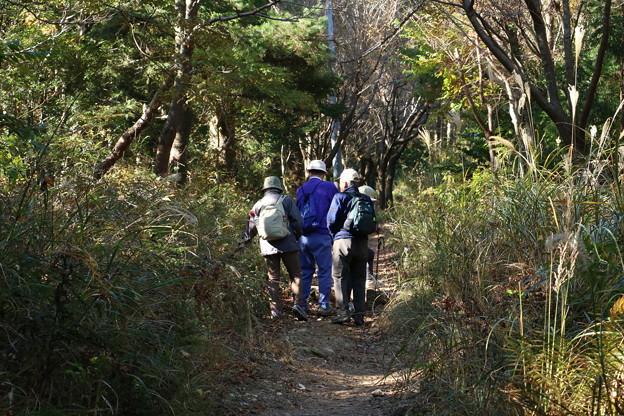 今日は富幕山へ旧山友とその仲間が来たので又登りました。