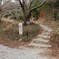 Photos: 富幕山