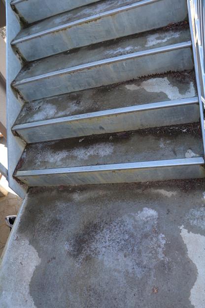 富幕山休憩舎展望デッキ階段凍っていた。