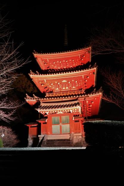 奥山方広寺三重の塔ライトアップ
