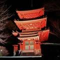 Photos: 奥山方広寺三重の塔ライトアップ