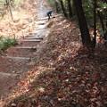 Photos: 富幕山奥山コース登山道階段の右側高い所歩けるよう整備しました。