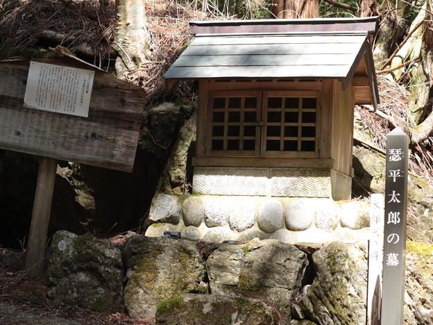 「悉平太郎、しつぺいたろう」の墓