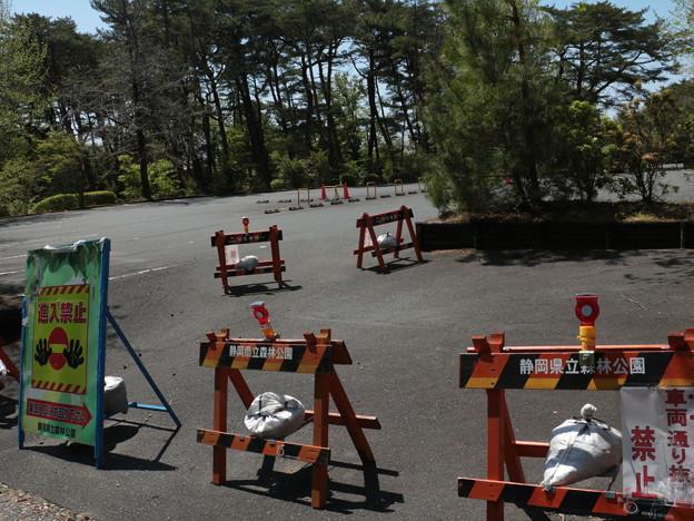 森林公園今日から駐車場閉鎖5月6日まで