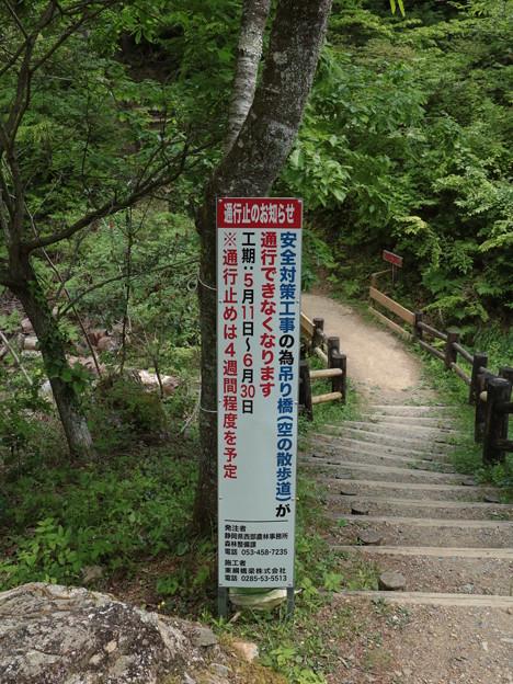 森林公園吊り橋工事案内5月11日~6月30日