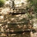 Photos: K)さん今日も階段の段差修理作業です。