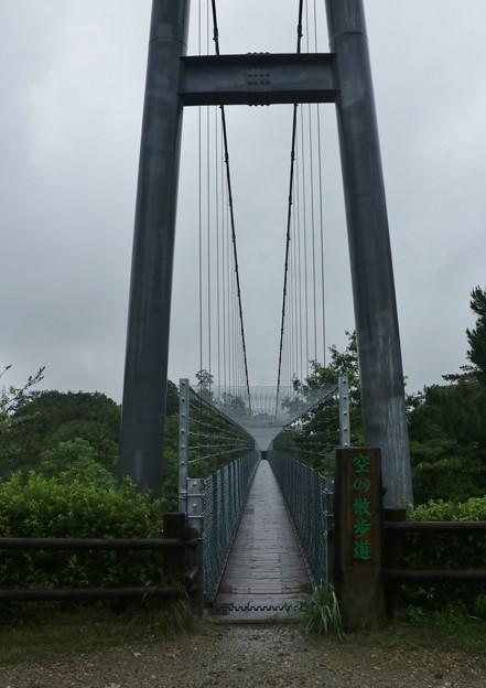 浜北森林公園吊橋(空の散歩道)の安全対策工事のため通行止でしたが通行可能ですが森の家側から入り吊橋出口第八駐車場付近工事中です。