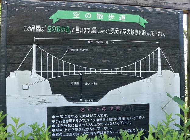 浜北森林公園吊橋(空の散歩道)工事前の吊橋